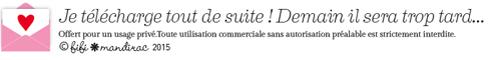 http://blog.fifimandirac.com/wp-content/uploads/2015/01/Icone-Téléchargement-2015.png
