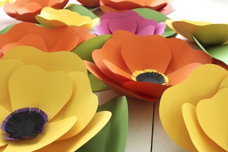 fleurs-sm3