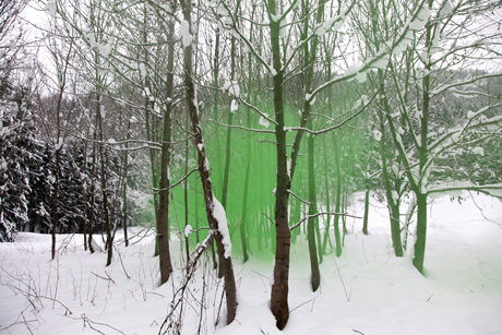 filippo-minelli-green